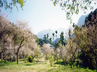 Mount Zion, Taiwan